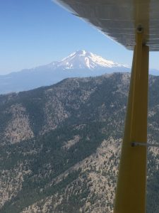 citabria, 7kcab, tailwheel, flight training, california